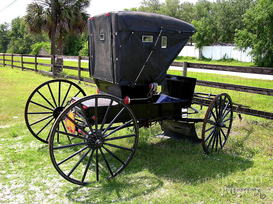 Amish Carriage by Mariarosa Rockefeller