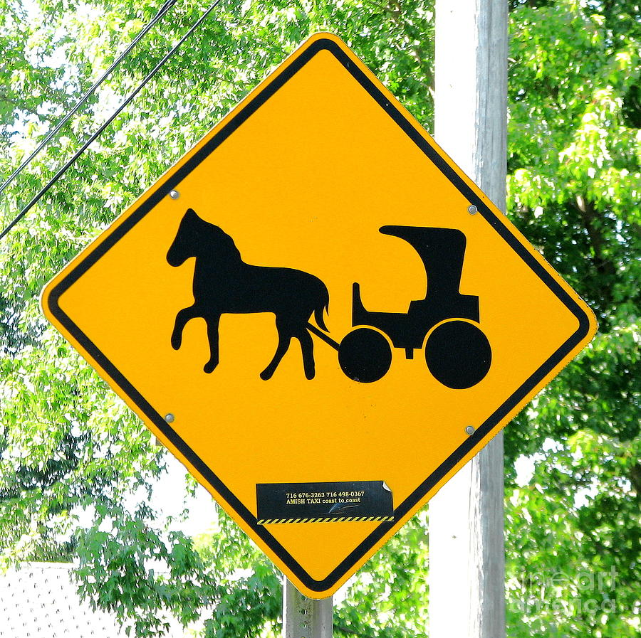 Amish Taxi Crossing Sign Chautauqua New York by Rose Santuci-Sofranko