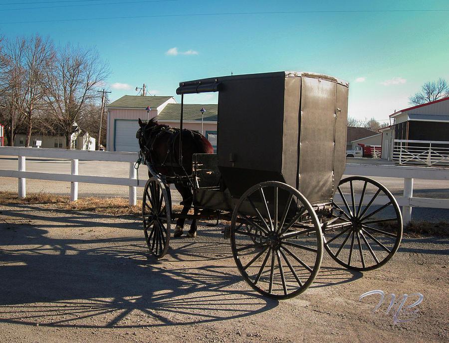 Amish Transportation by Marlenda Clark