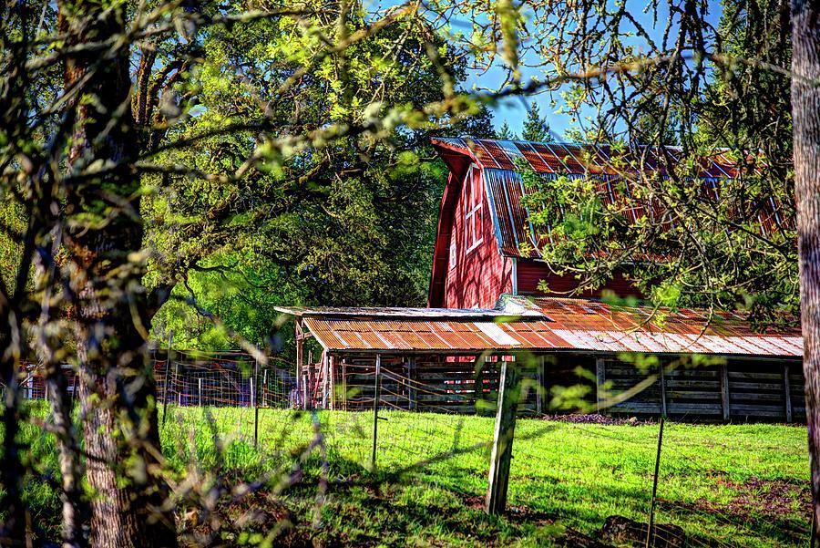 Amity Road Barn 1 Photograph