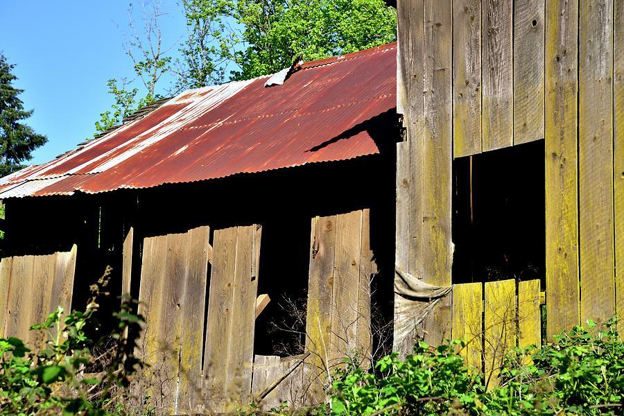 Amity Road Barn Three Windows Photograph