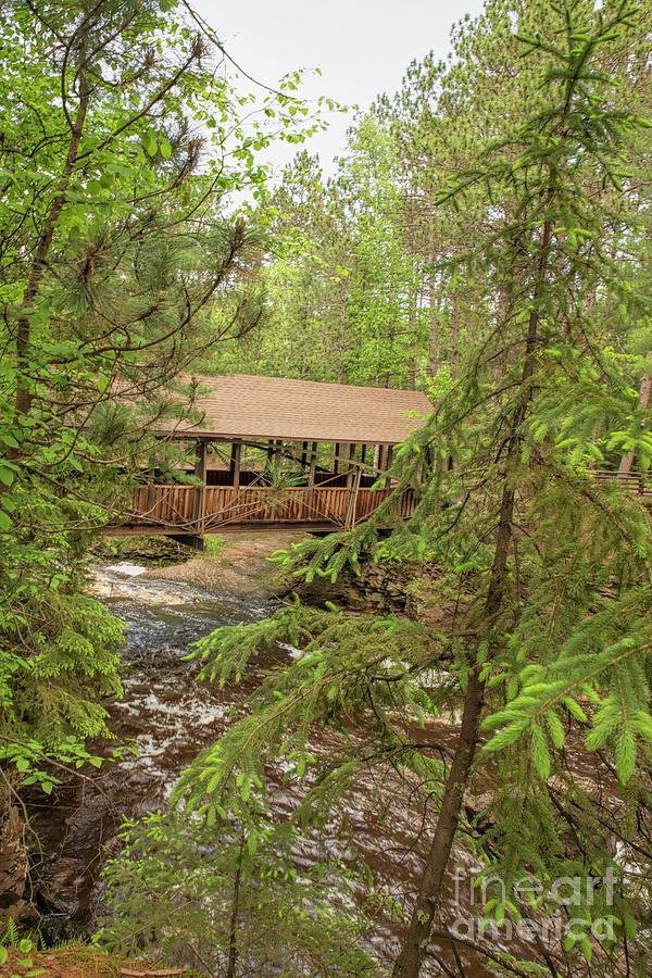 Amnicon Falls State Park Covered Footbridge Through The Towering Pines Photograph