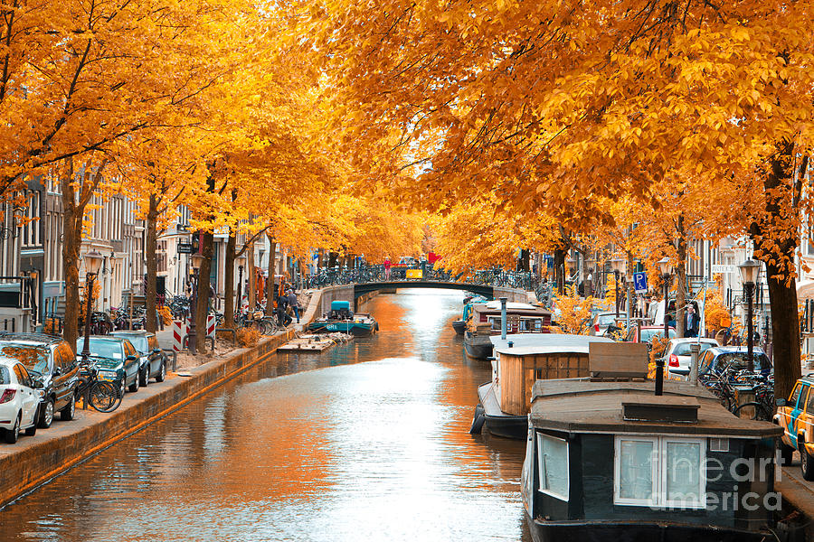 Capital Photograph - Amsterdam Autumn. Beautiful Places In by Skreidzeleu