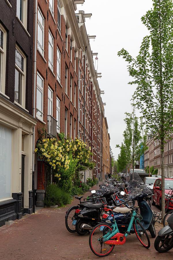 A Haarlem Street Scene by Georgia Fowler