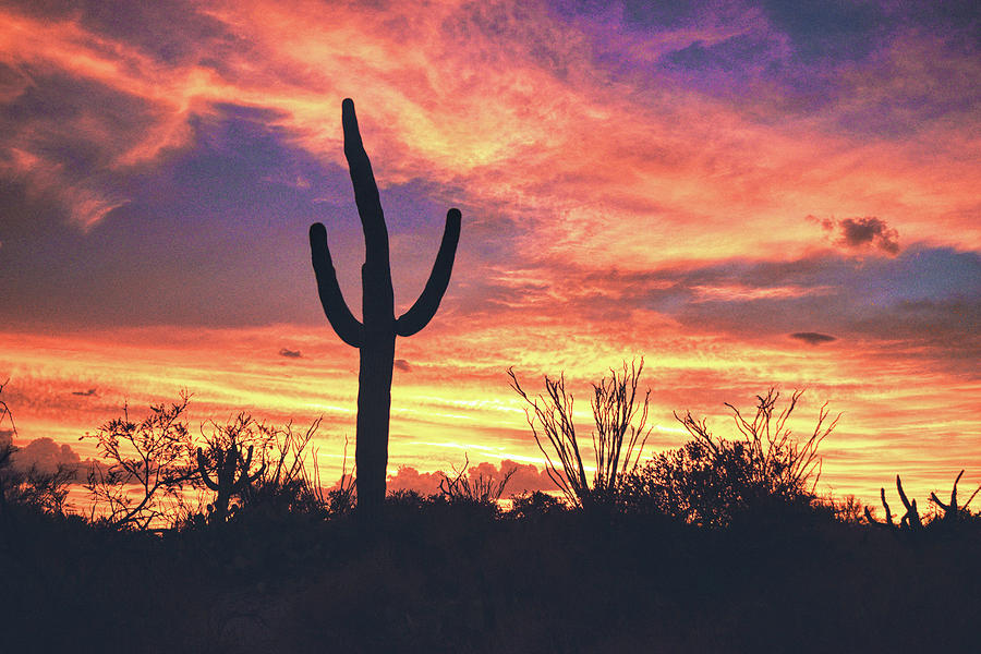 An Arizona Sunset by Chance Kafka