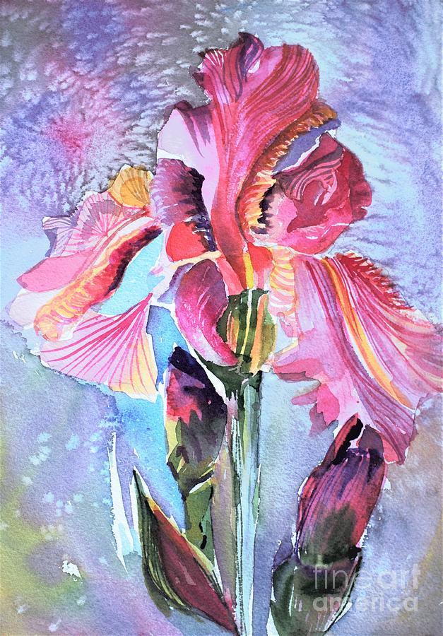 An Iridescent Iris  by Mindy Newman