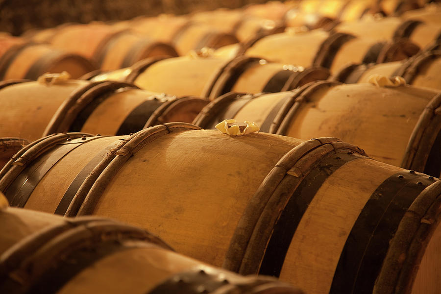 An Old Wine Cellar Full Of Barrels Photograph by Brasil2