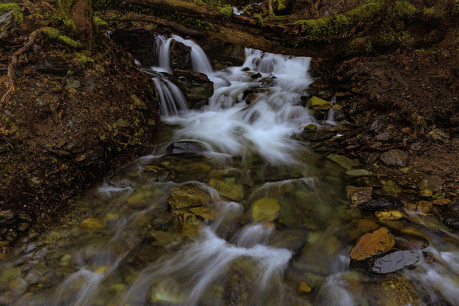 An Unkown Creek in the Feather River Canyon by Don Hoekwater Photography