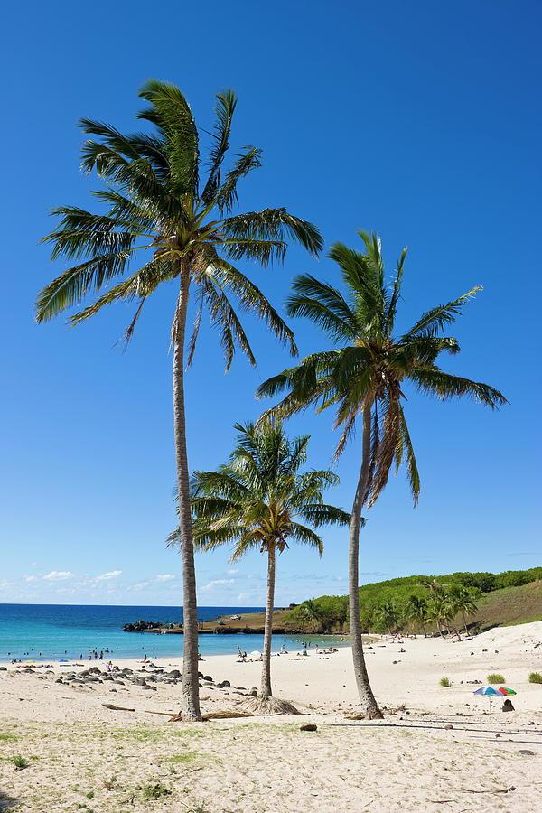 Anakena Beach, The Islands White Sand Photograph by Gavin Hellier / Robertharding