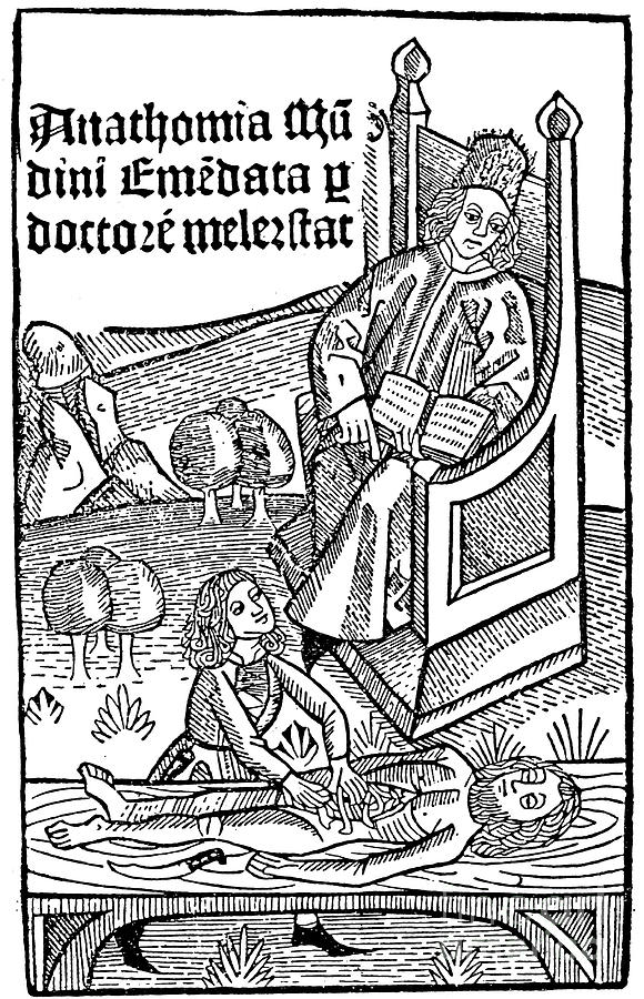 Anatomy Demonstration, 1493 Drawing by Print Collector