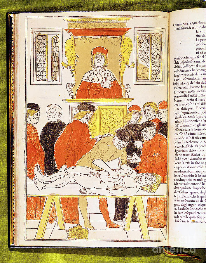 Anatomy Lecture At Padua, Italy, 1483 Drawing by Print Collector