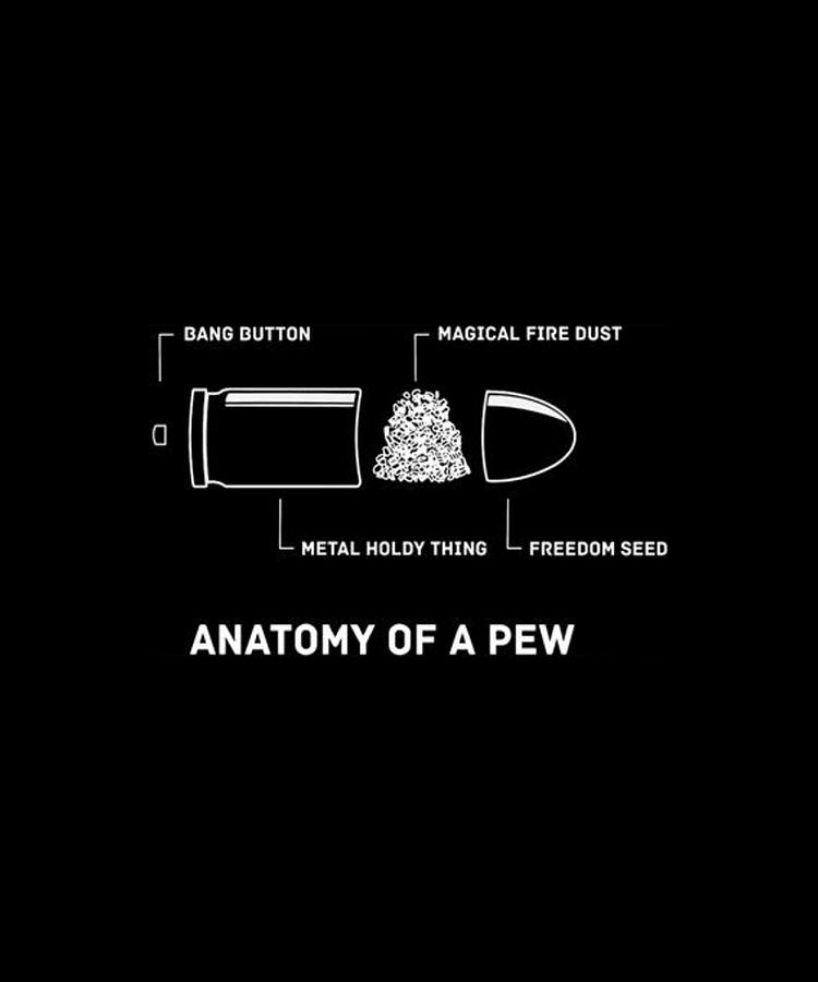 anatomy-of-a-pew-gun-rights-molon-labe-f