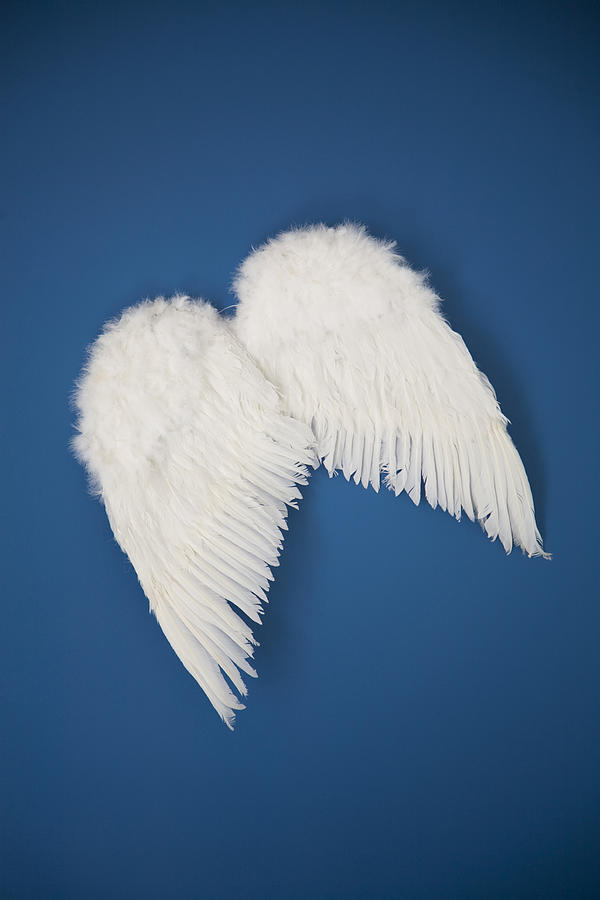 Angel Wings Photograph by Ssuni
