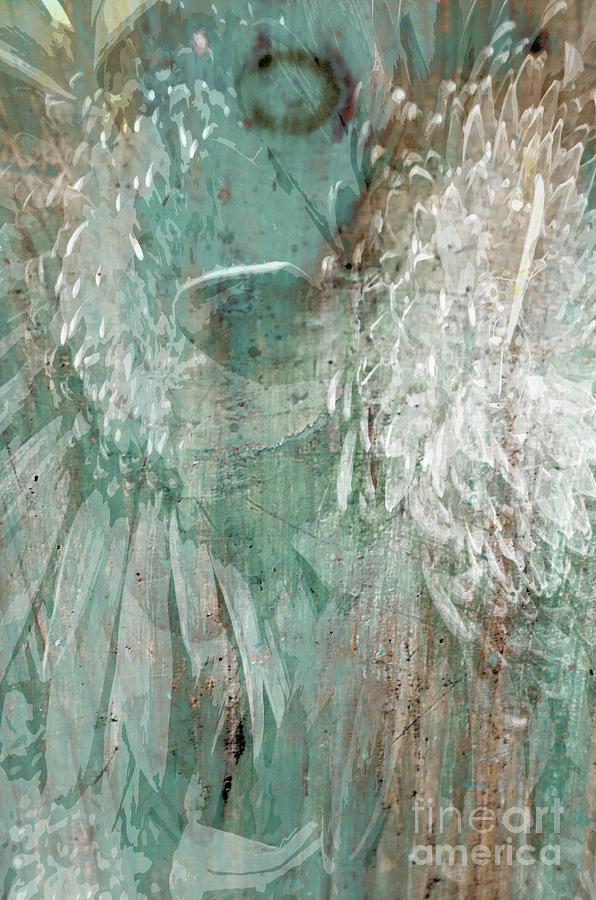 Angels Wings by Marcia Lee Jones