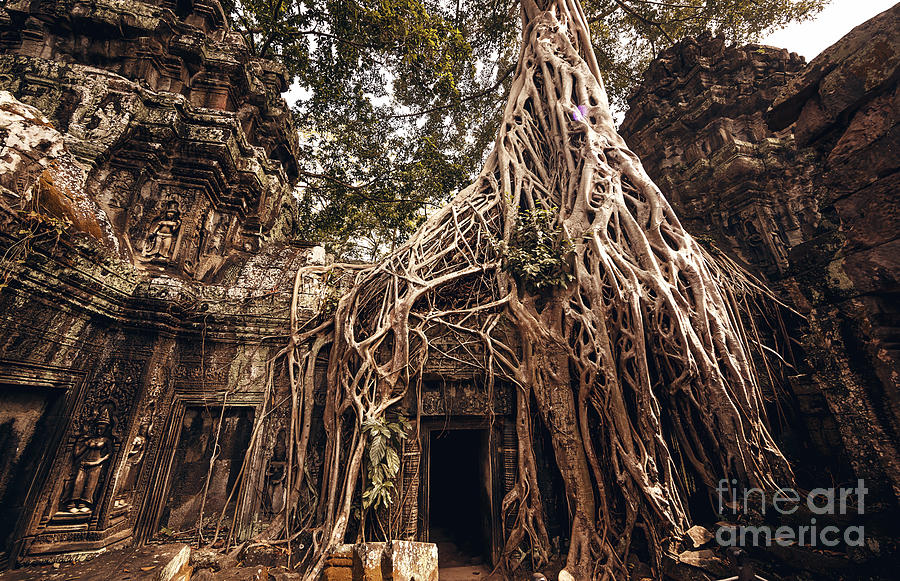 Castle Photograph - Angkor Wat Temple In Siem Reap, Cambodia by Andrey Bayda