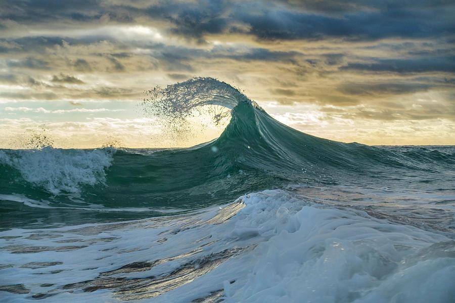 Sea Photograph - Angler Fish by Sean Davey