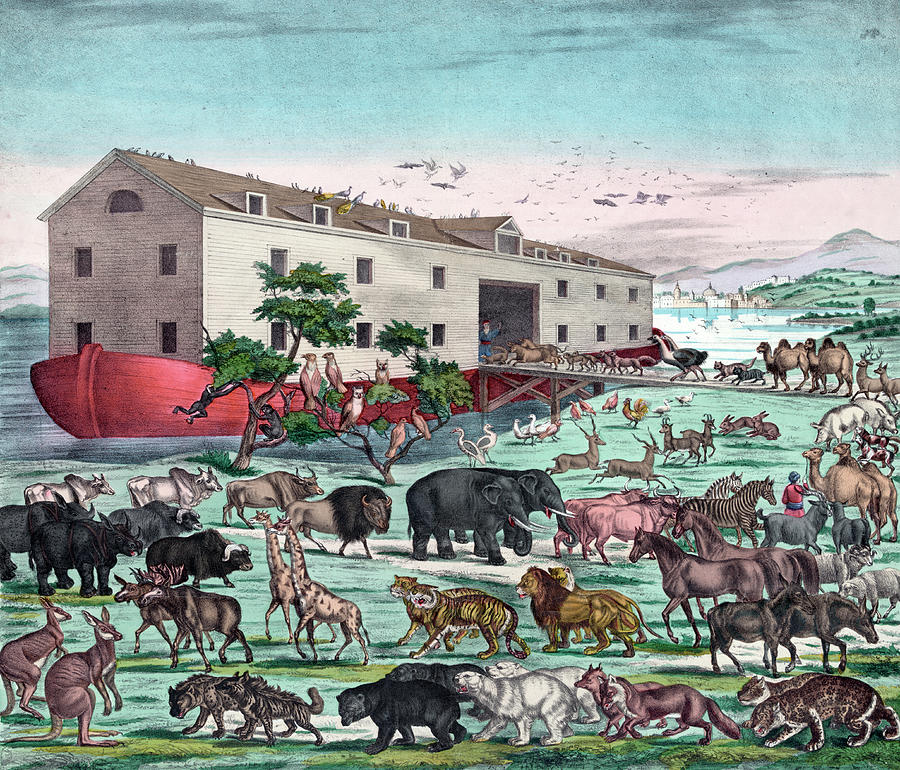 Animals Entering Noahs Ark Photograph by Graphicaartis