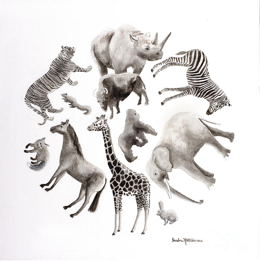 Animals Wild or Free by Sandra Neumann Wilderman
