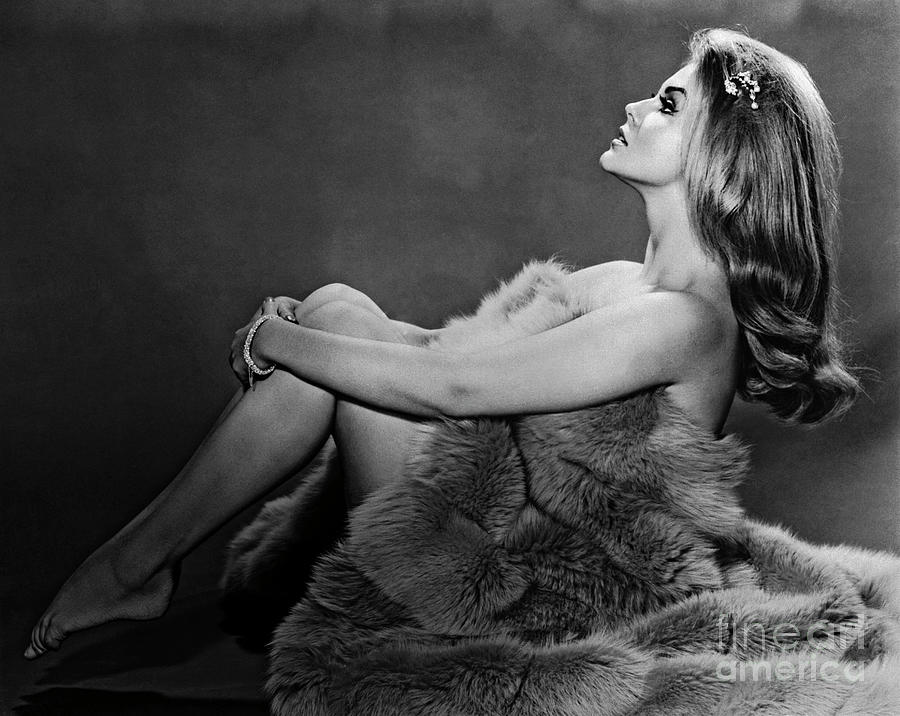 Ann-margret In Profile Pose And Wrapped Photograph by Bettmann