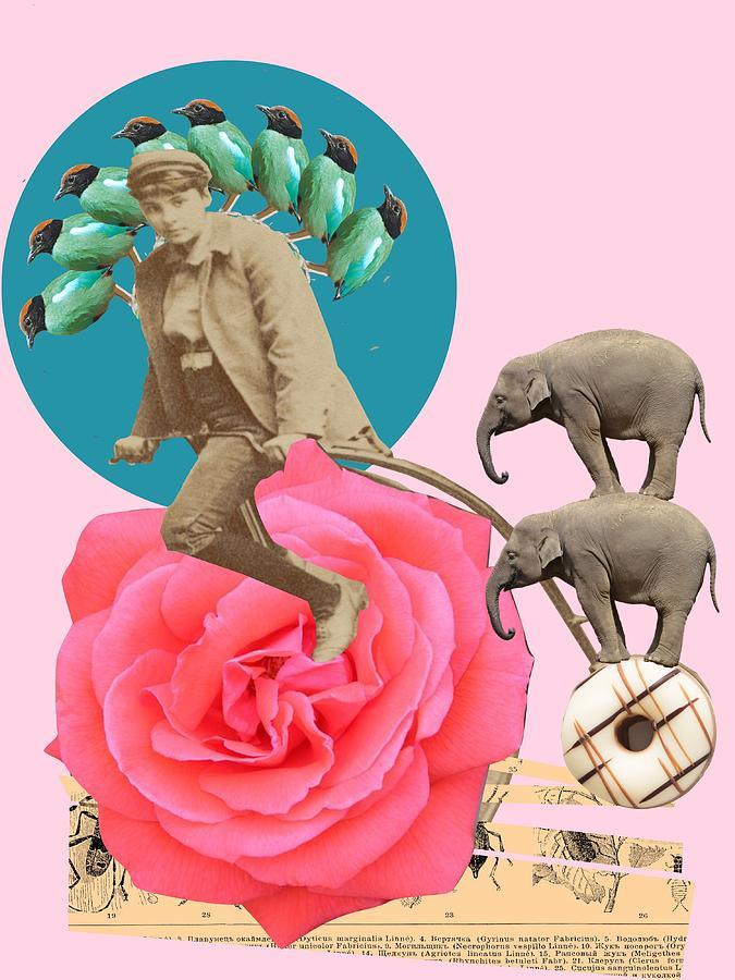 Another Balancing Act Digital Art