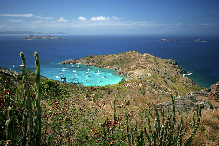 Anse De Colombier, St. Barth Photograph by Photo ©tan Yilmaz