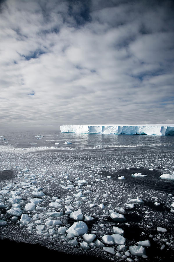 Antarctica Impression Photograph by Mlenny