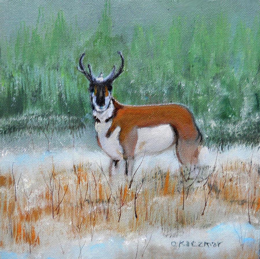 Antelope by Olga Kaczmar