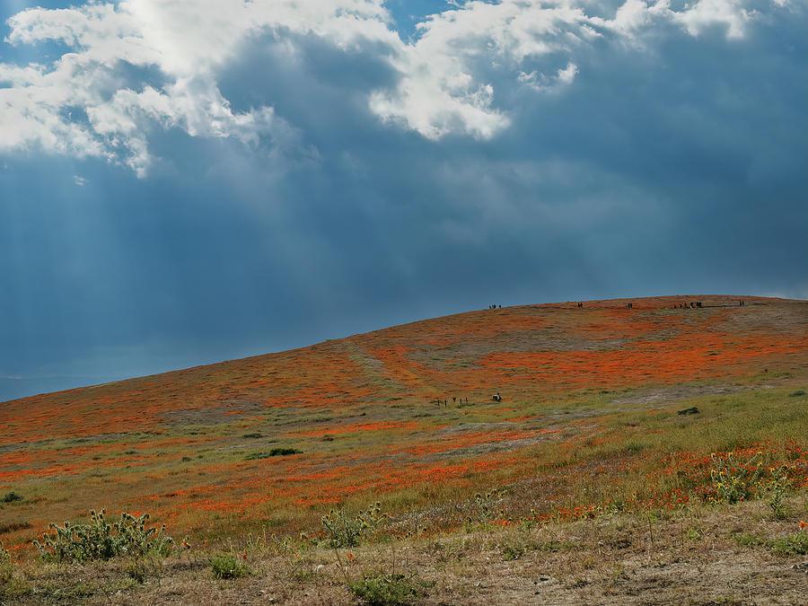 Antelope Valley PR02 by Alan Kepler
