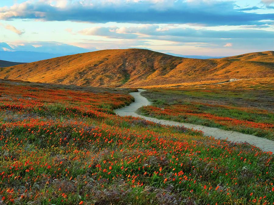 Antelope Valley PR04 by Alan Kepler