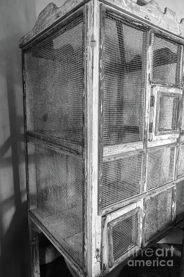 Southwestern Photograph - Antique Bird Cage by Edward Fielding