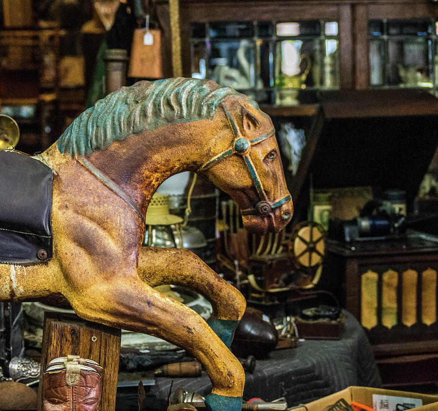 Antique Carousel Horse by Mary Chris Hines