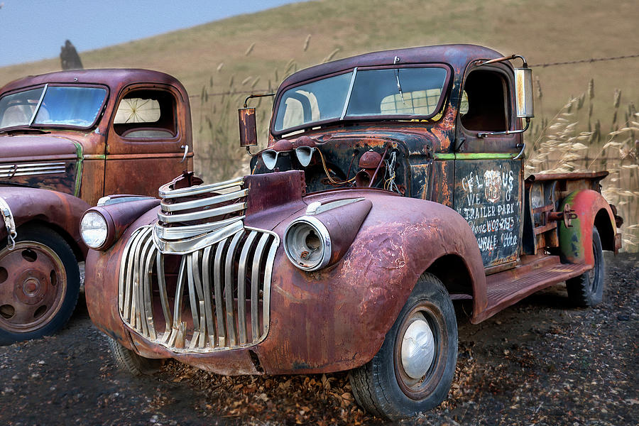 Antique Cars by Lisa Malecki