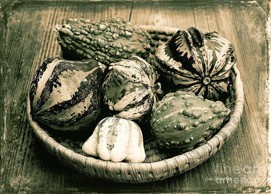 Antique Harvest by Jutta Maria Pusl