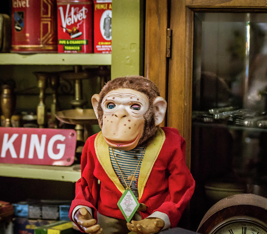 Antique Monkey by Mary Chris Hines