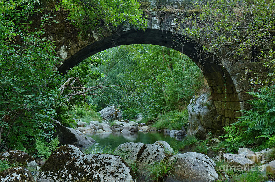 Bridge Photograph - Antique Stone Bridge In Carvalhais by Angelo DeVal