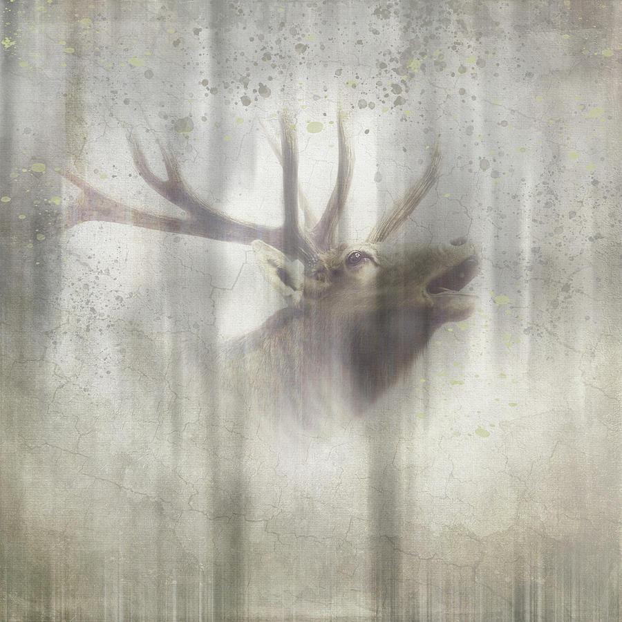 Elk Mixed Media - Antique Wildlife Elk 2 by Lightboxjournal