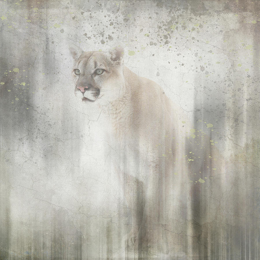 Filter Photograph - Antique Wildlife Lion by Lightboxjournal