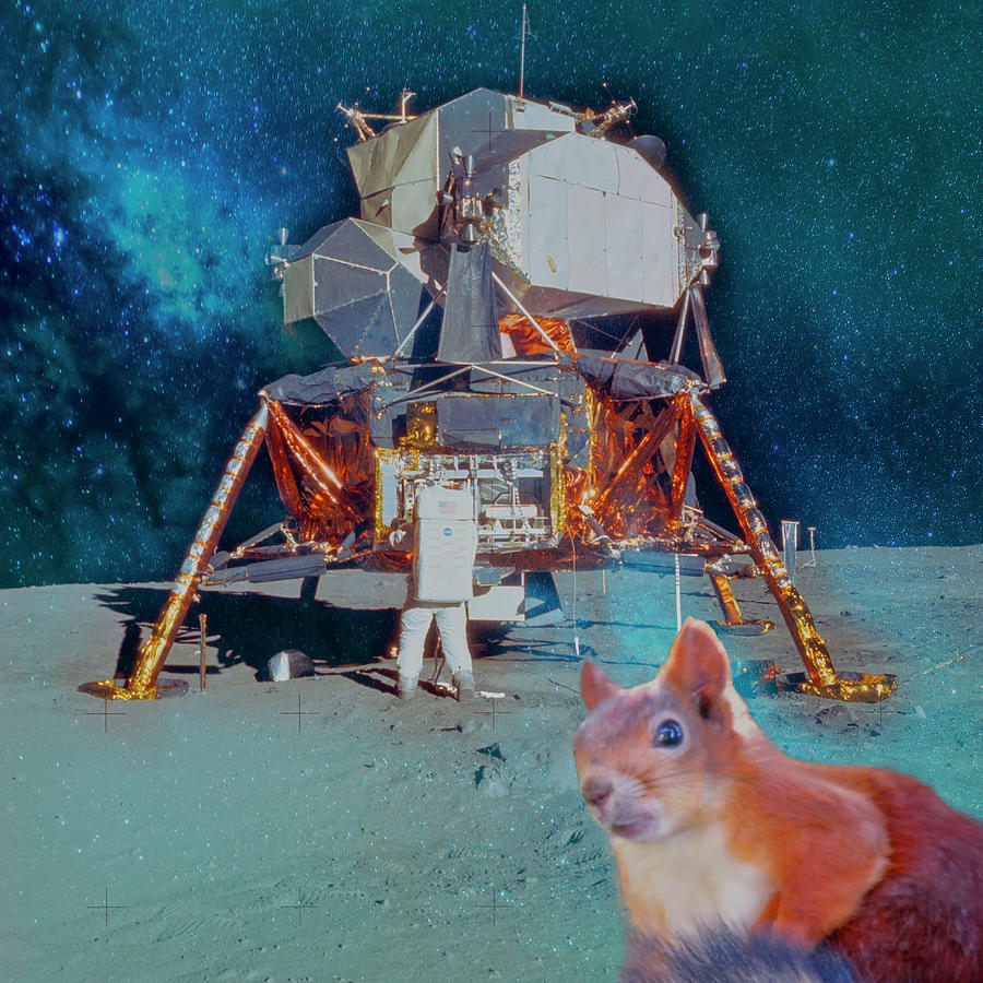 Apollo 11 Lunar Module On Lunar Surface Gets A Visitor by Johanna Hurmerinta