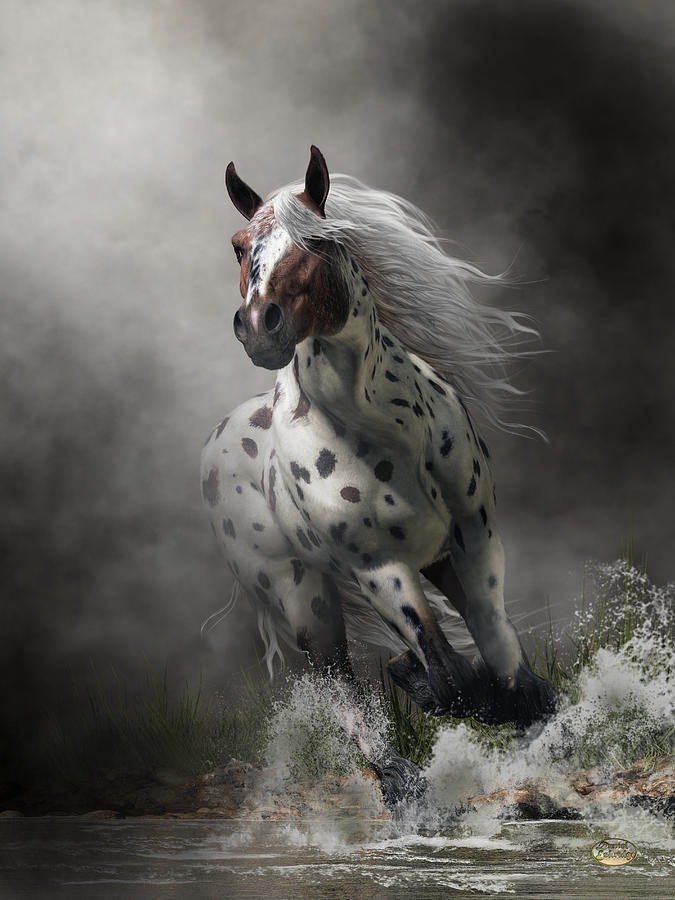 Appaloosa by Daniel Eskridge