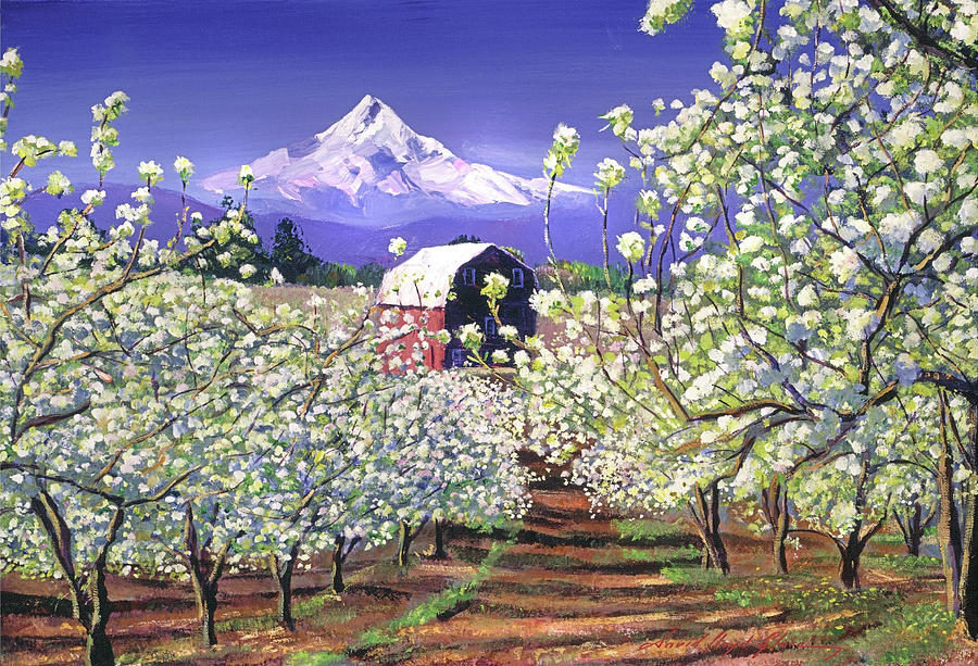 Mt Hood Painting - Apple Blossom Time by David Lloyd Glover