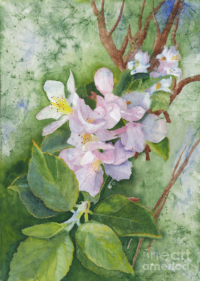Apple Blossoms In Spring Watercolor Painting