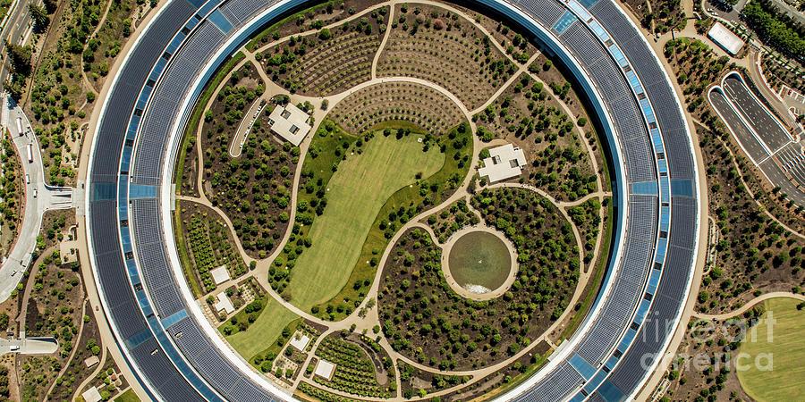 Apple Park Photograph by Steve Proehl