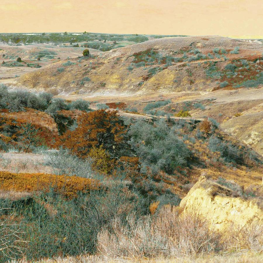 North Dakota Photograph - April Domain In Dakota West by Cris Fulton