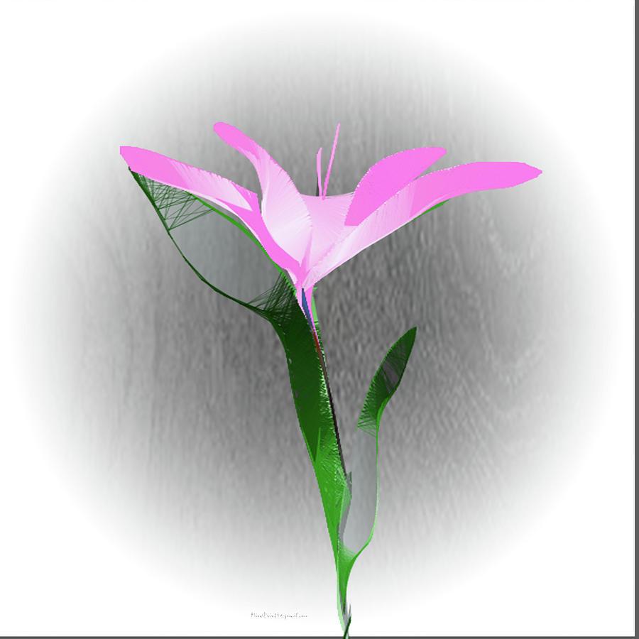 Aqua Lily by Asok Mukhopadhyay