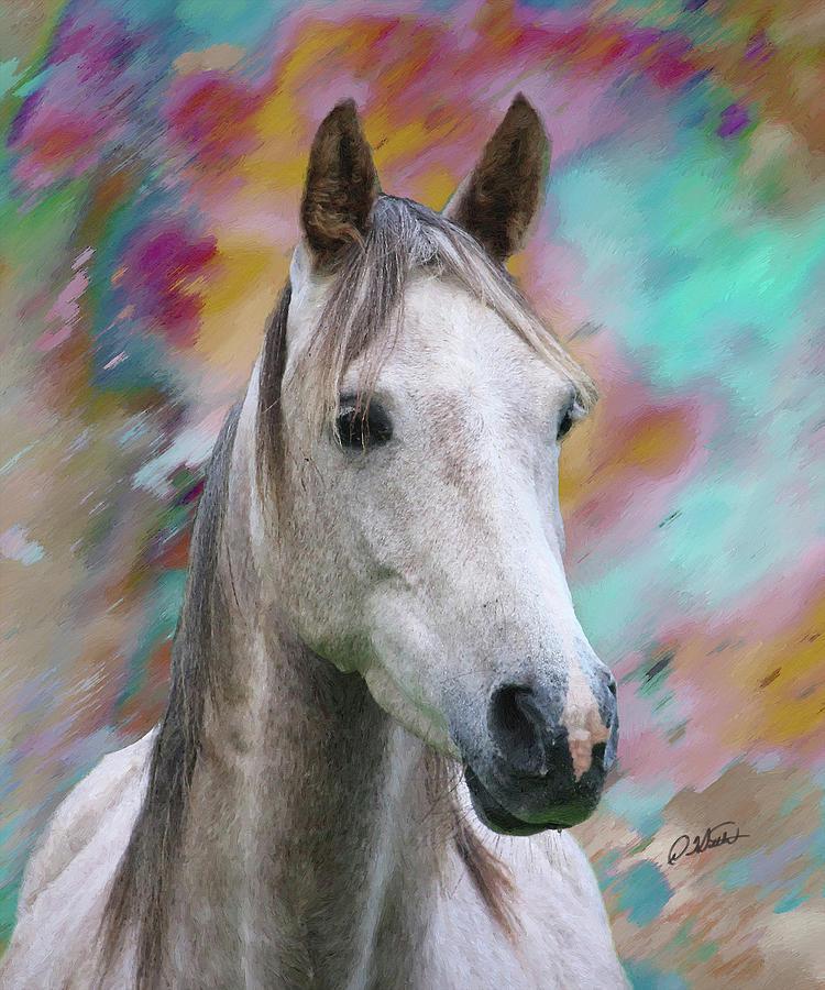 Arabian Horse DWP1001805 by Dean Wittle