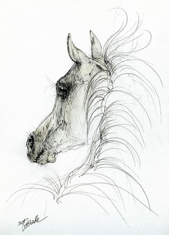 Arabian horse head 2019 09 01 by Angel Ciesniarska