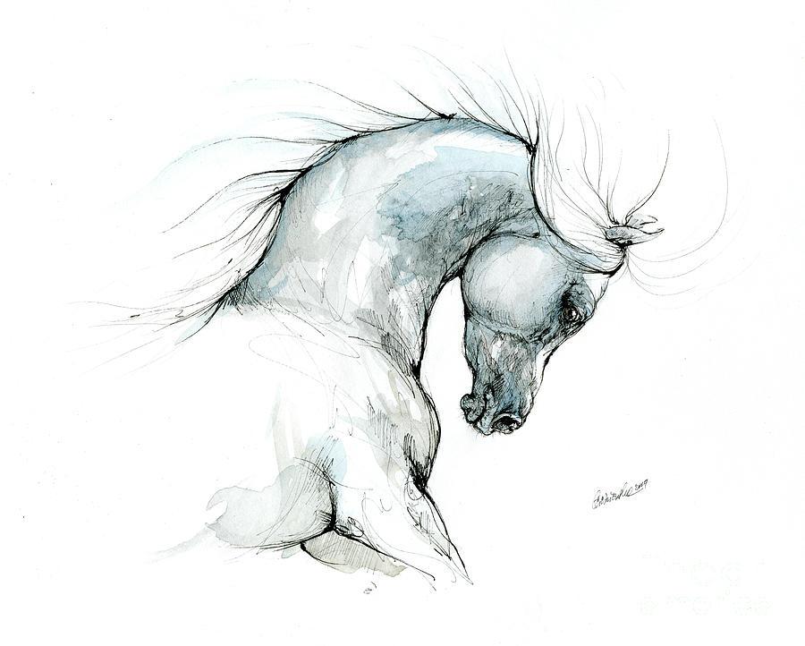 Arabian horse head 2019 09 03 by Angel Ciesniarska