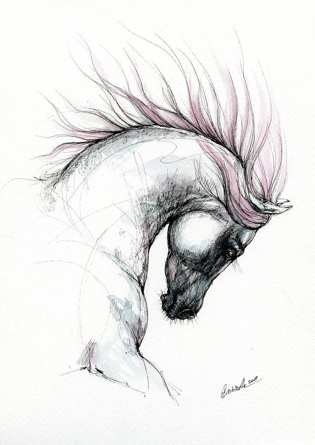 Arabian horse head 2019 09 04 by Angel Ciesniarska