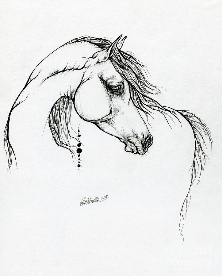 Arabian horse ink art 01 10 2019 by Angel Ciesniarska
