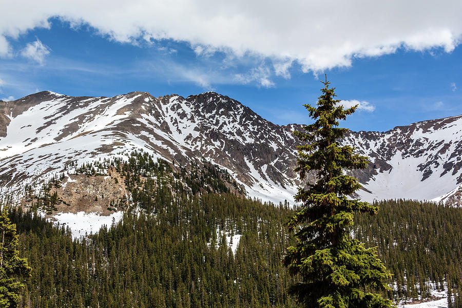 Arapahoe Basin, Loveland Pass by Jeanette Fellows